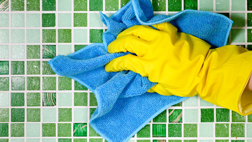 Cleaning Services at Vine Court...what to know