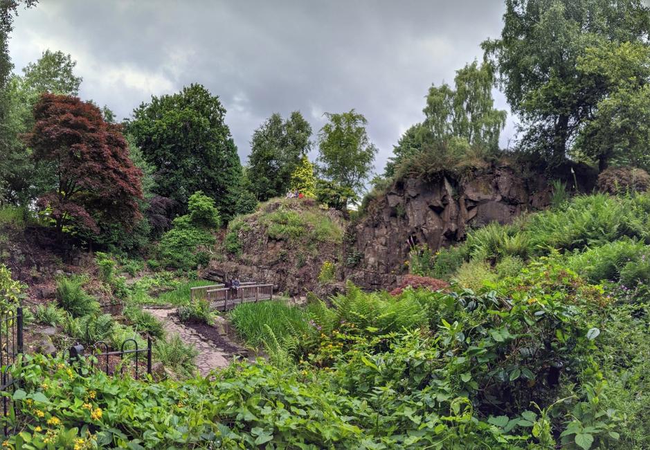 Victoria Park Fossil Grove