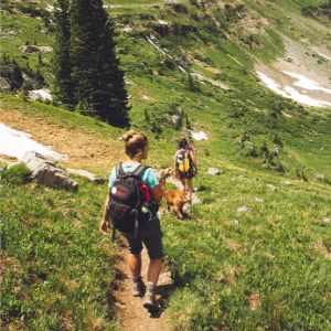 a group of people hiking in summer